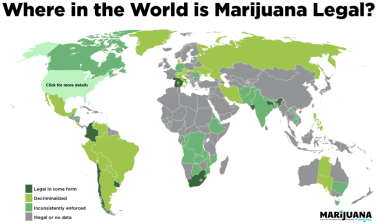 MJ-World-Legality-Infographic-1024x608