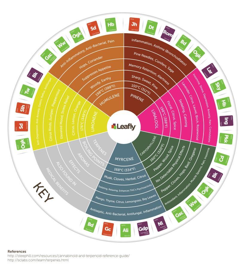 strain ailment chart